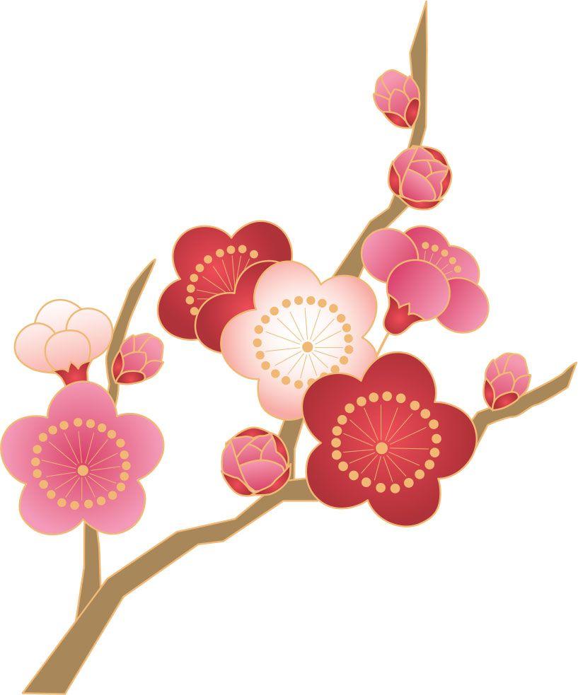 イベント「梅を見にいこう!」